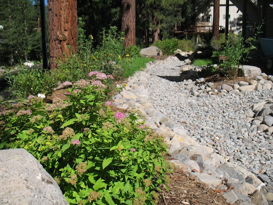 Photo of Stormwater BMP Tahoe