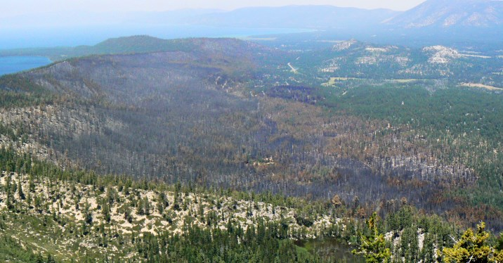 A view from Flagpole Peak looking at the aftermath of the 2007 Angora Fire