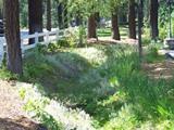 Landscape Conservation Program