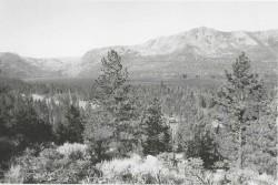 1992 Fallen Leaf Lake