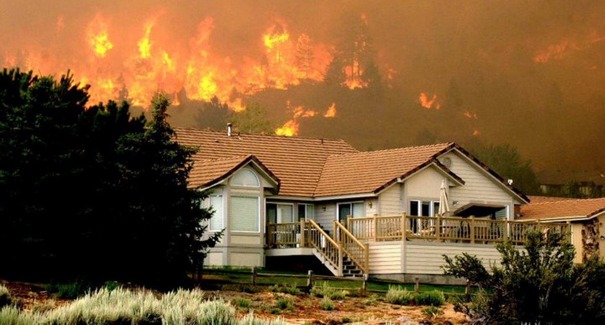 House with Defensible Space - Photo Courtesy of Candice Towell and Reno GAZETTE JOURNAL - LWF-2