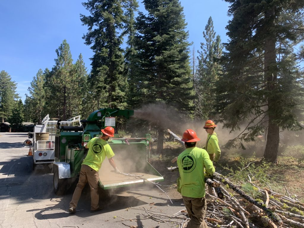 Forestry crew chipping timber